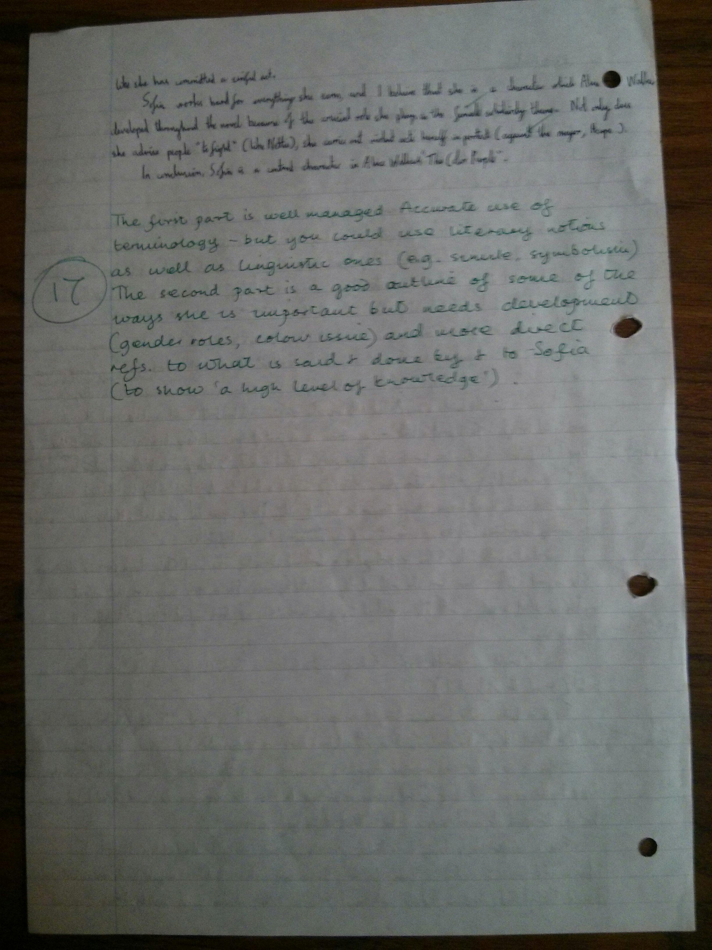 Color Purple Essay cnc supervisor cover letter crop consultant ...